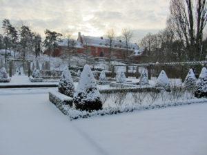Rosengården vinter