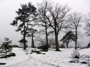 Villa utsikten vinter